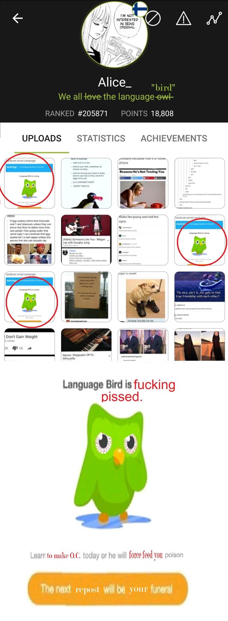 Language bird has had enough. - meme