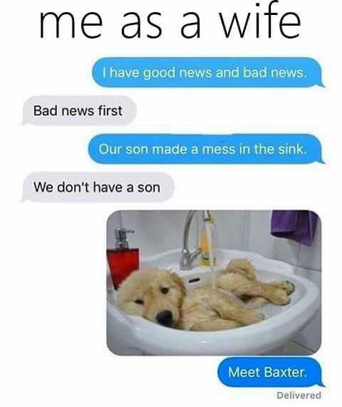 Baxter - meme