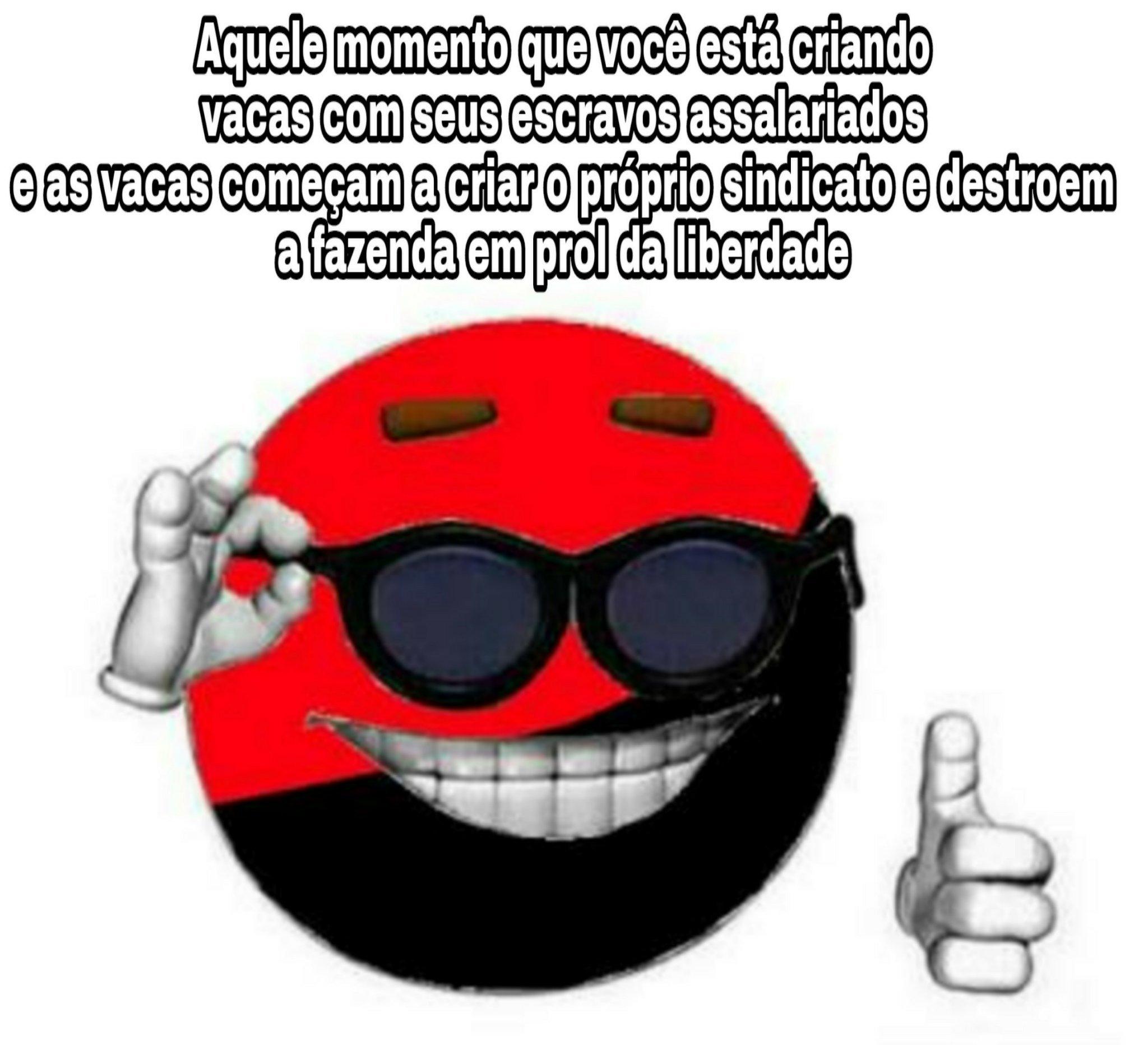 Anarco sindicalismo :ohgodwhy: - meme