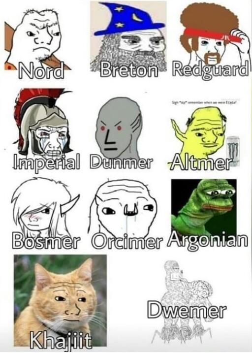 Skyrim 2 - meme