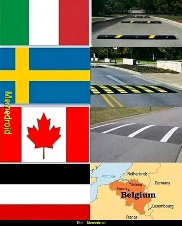 Speed bumps for different countries - meme