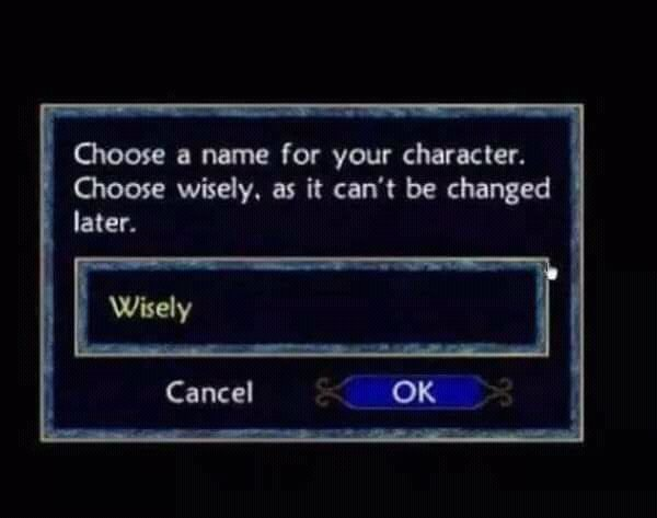 Choose a name for your character - meme