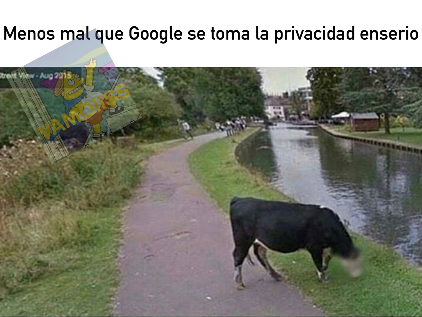 La Vaca Privada - meme