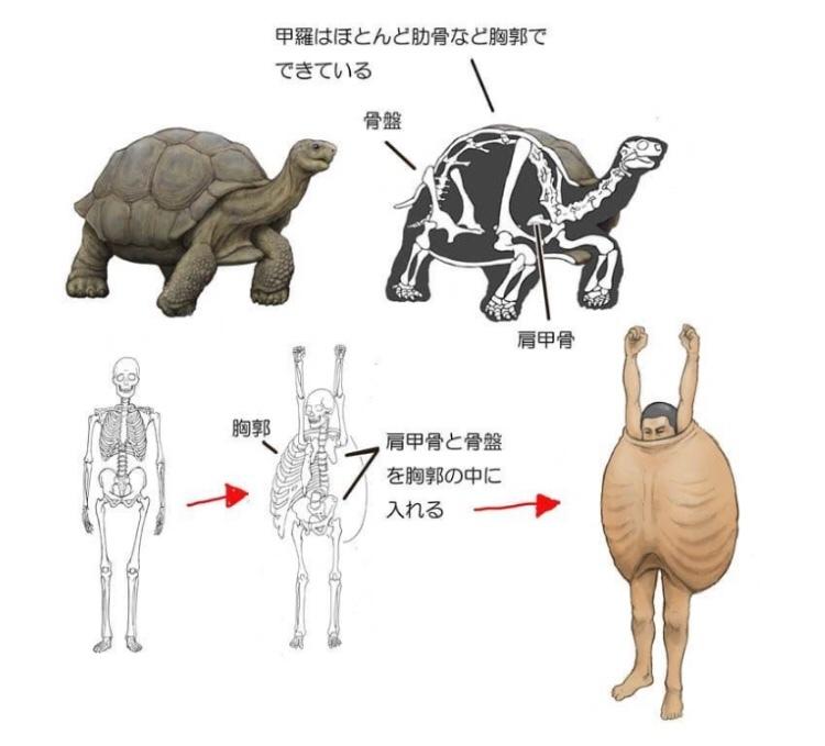 Human Animals Part 2 - meme