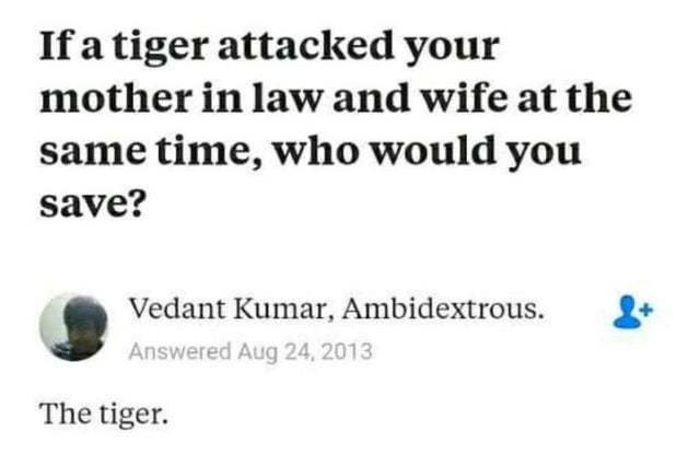 If a tiger attacked your mother in law and wife at the same time who would you save? - meme
