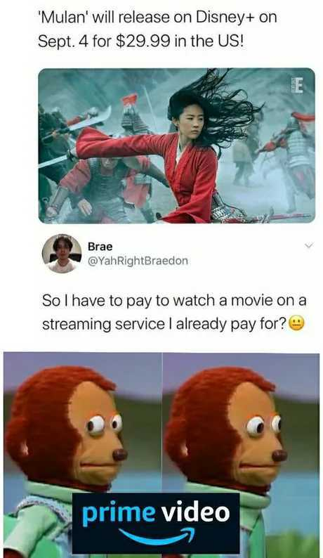 Why is the price even more expensive than a theater ticket - meme