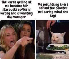 KARENS NOOOO - meme
