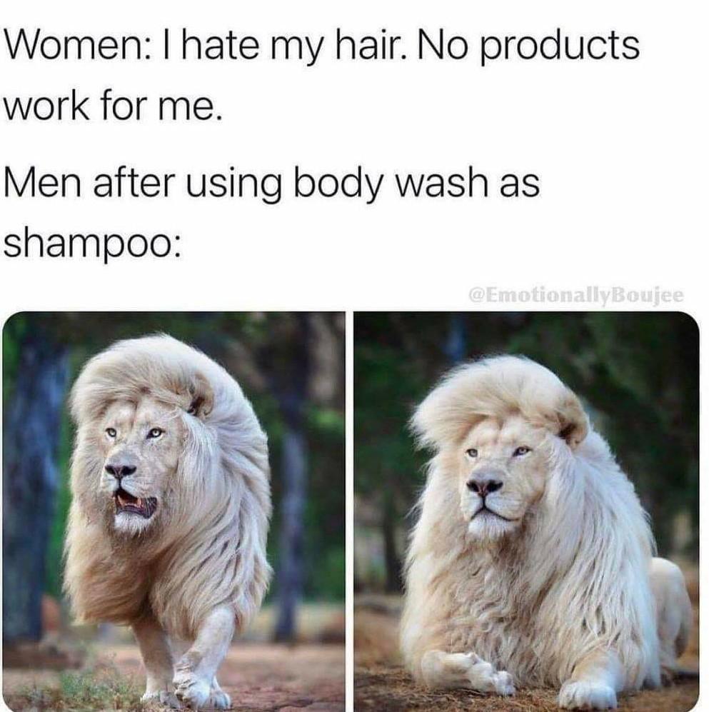 Damn right - meme