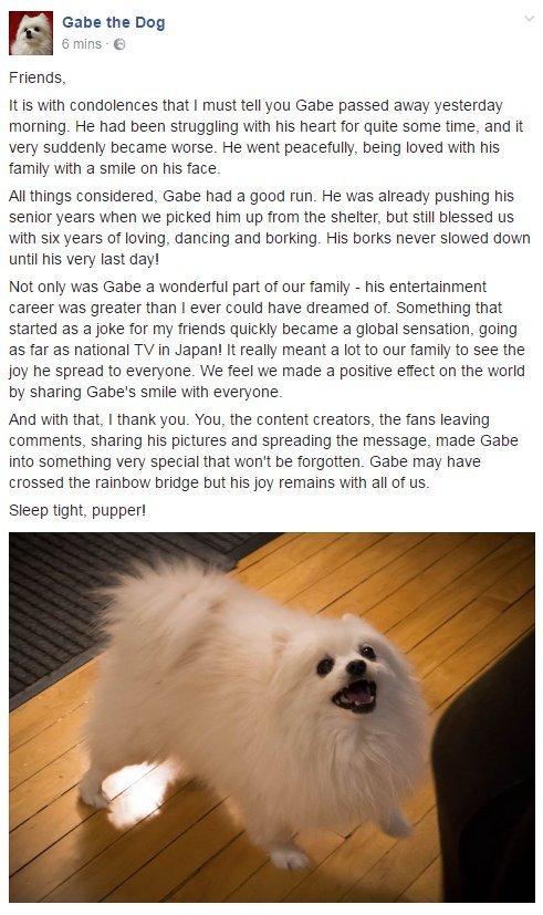 I'll miss gabe... - meme