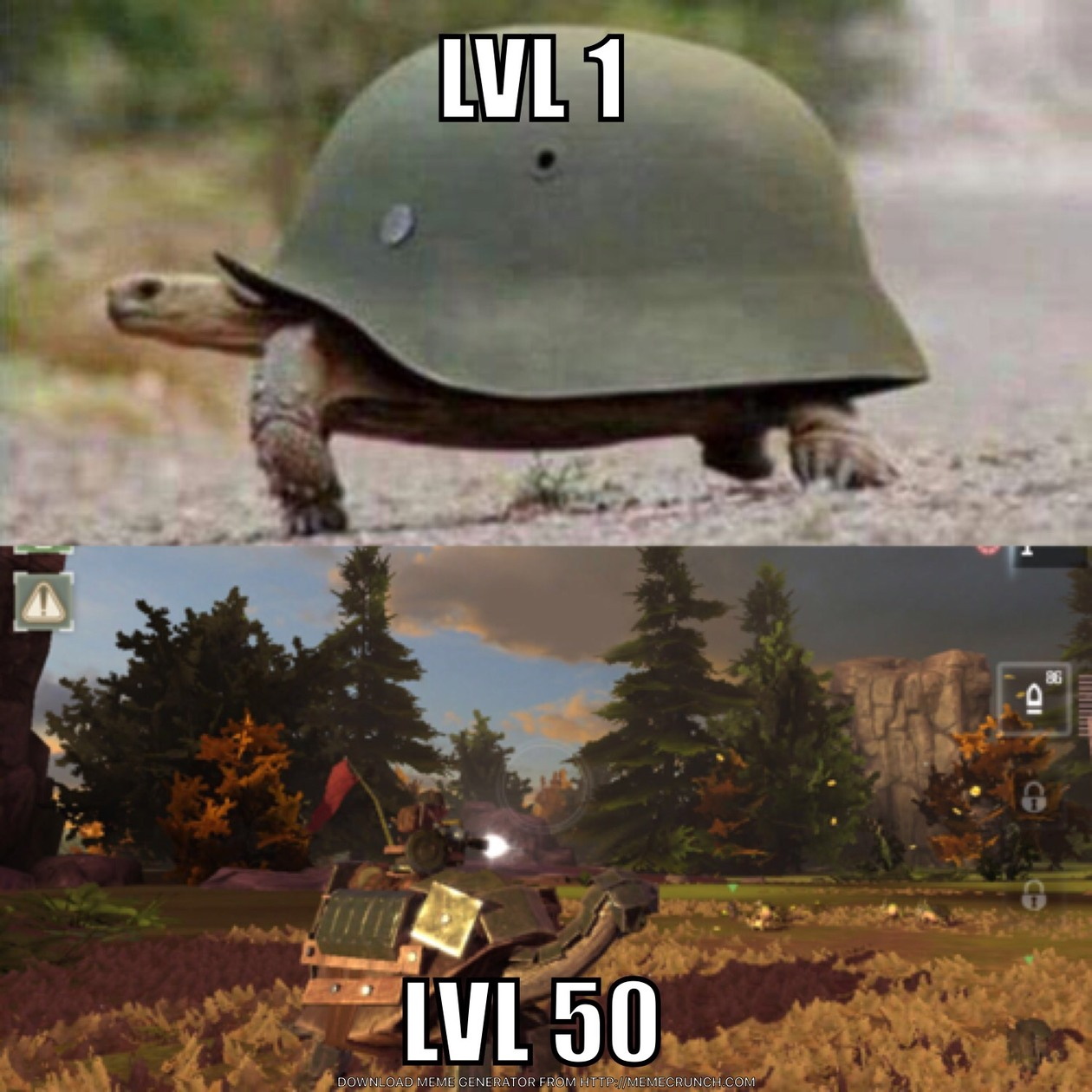 turtle leveled up - meme