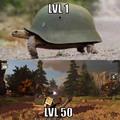 turtle leveled up