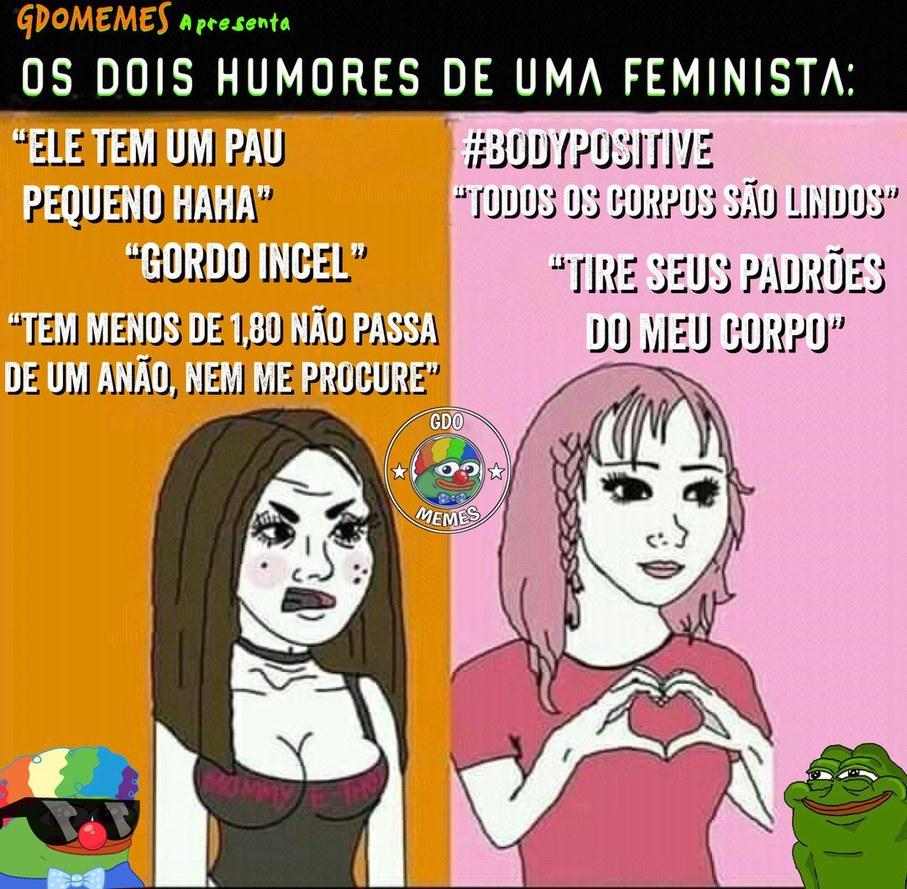 Feministas são hipócritas - meme