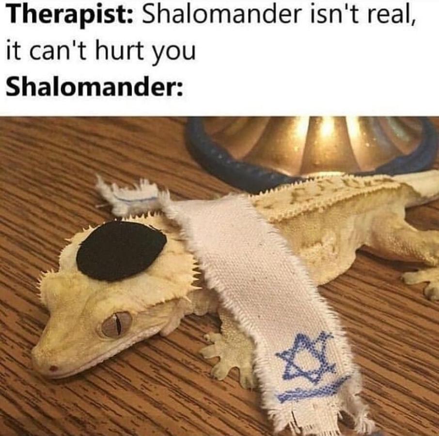 Shalom - meme