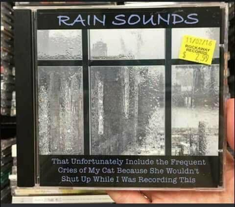 Rain sounds - meme