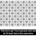 Me haz go blind