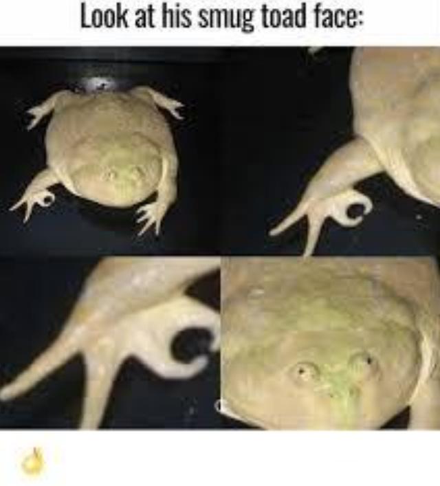 'u' - meme