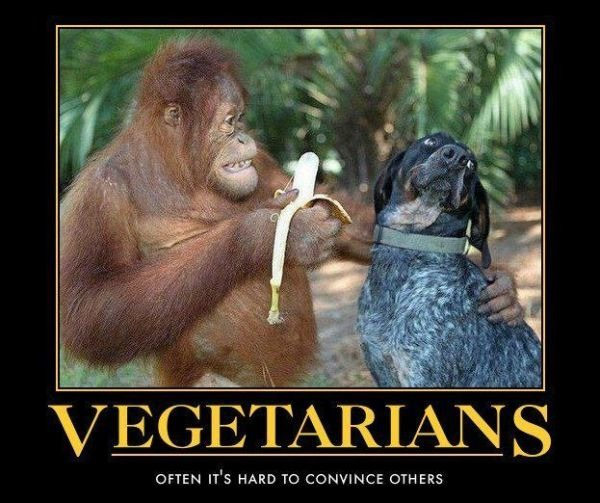 Végétarien, des fois c'est dur de convaincre les autres - meme