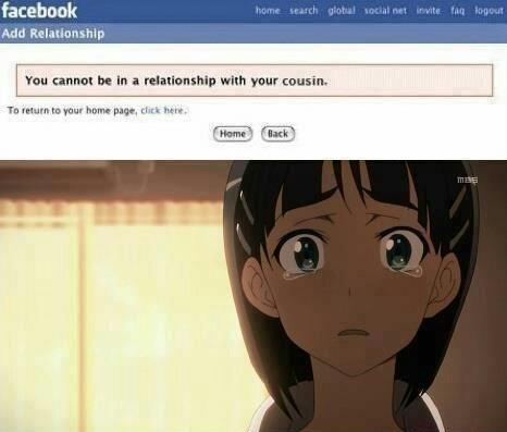 Anime is kirito's harem - meme