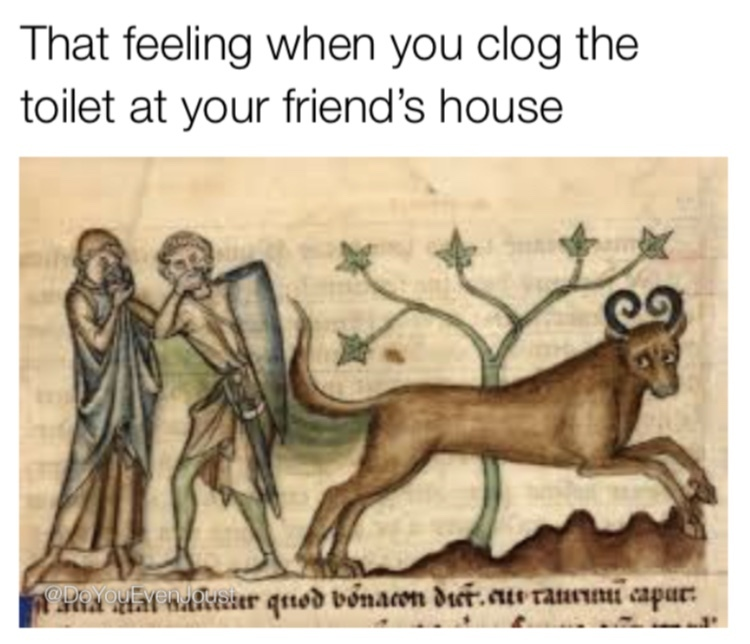 A real shitshow - meme