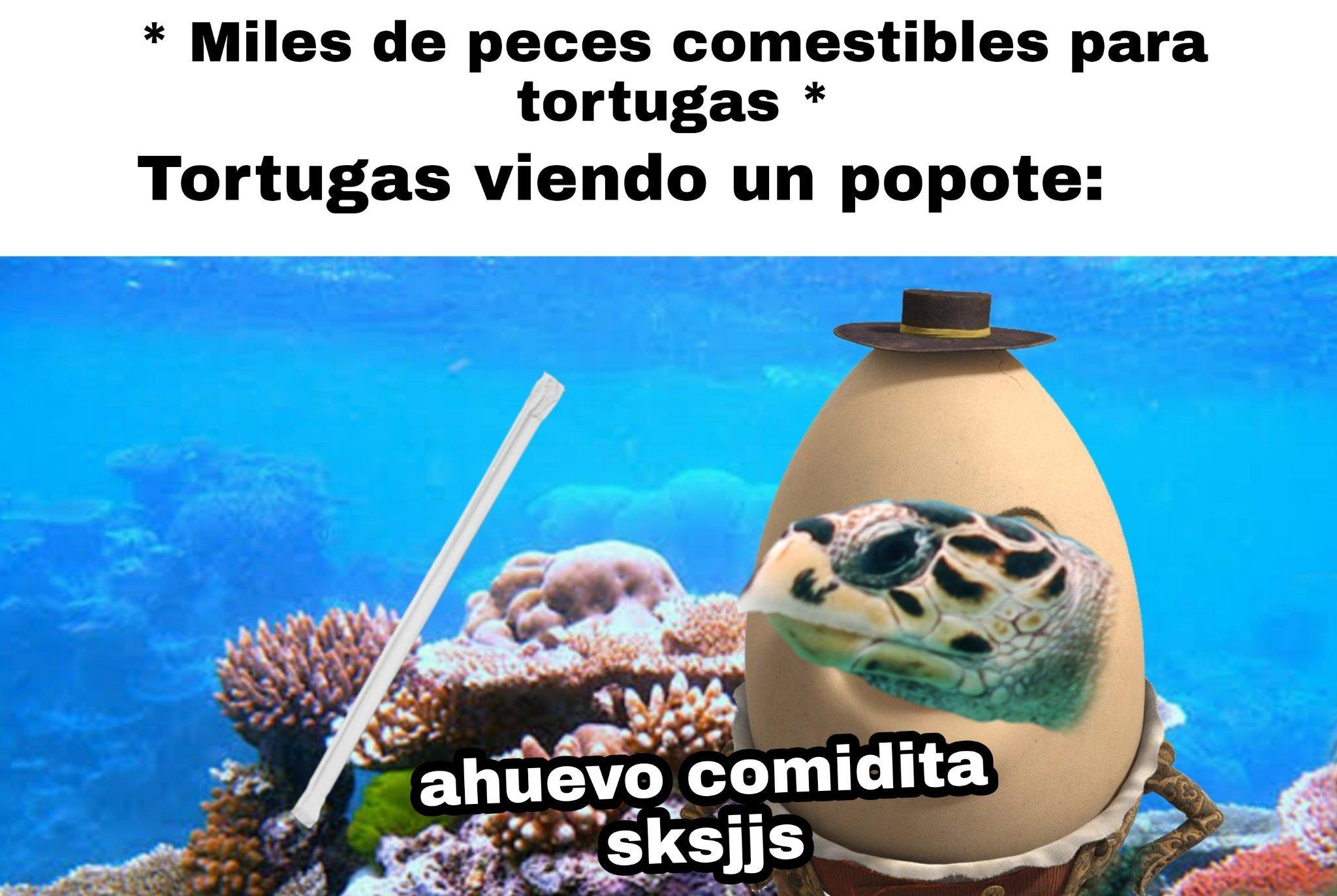 Memes ambientalistas :)
