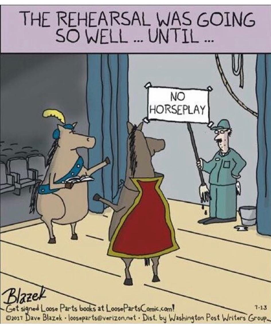 no horse play - meme