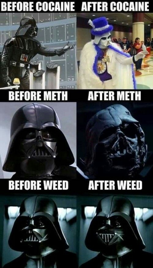 Dongs in drugs - meme