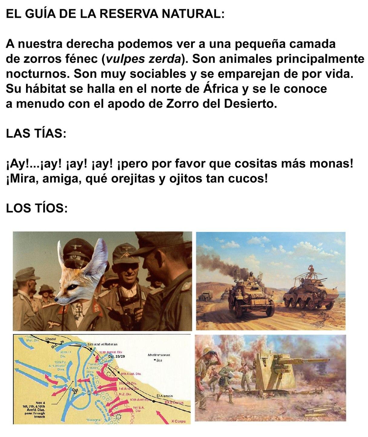 Zorro del Desierto - meme