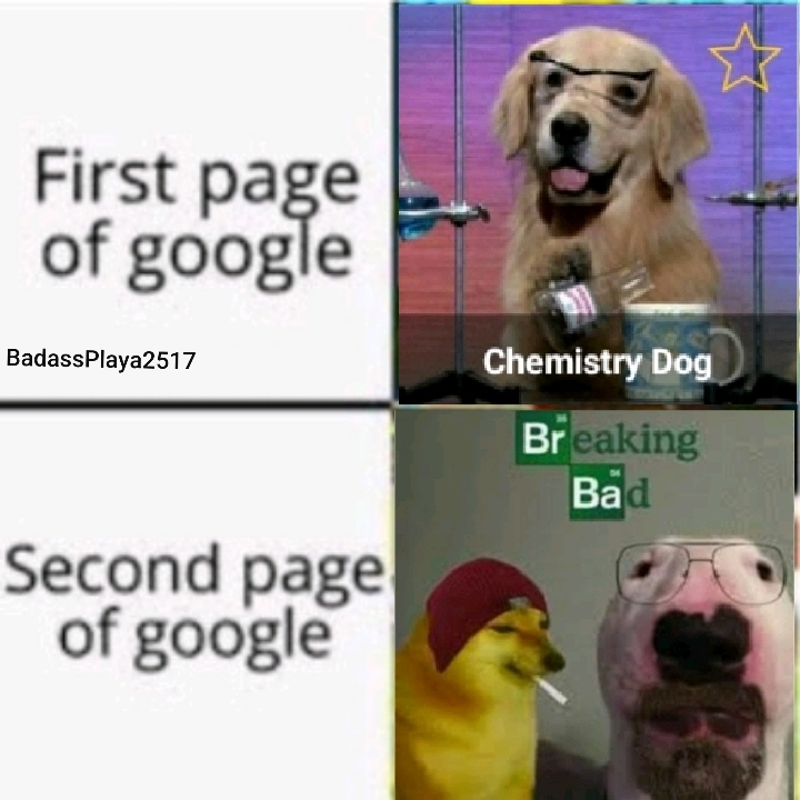 It's science female dog! - meme