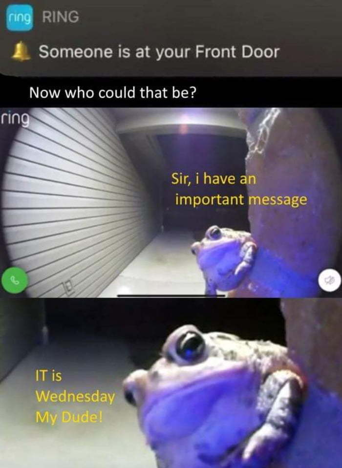 Ding-dong - meme