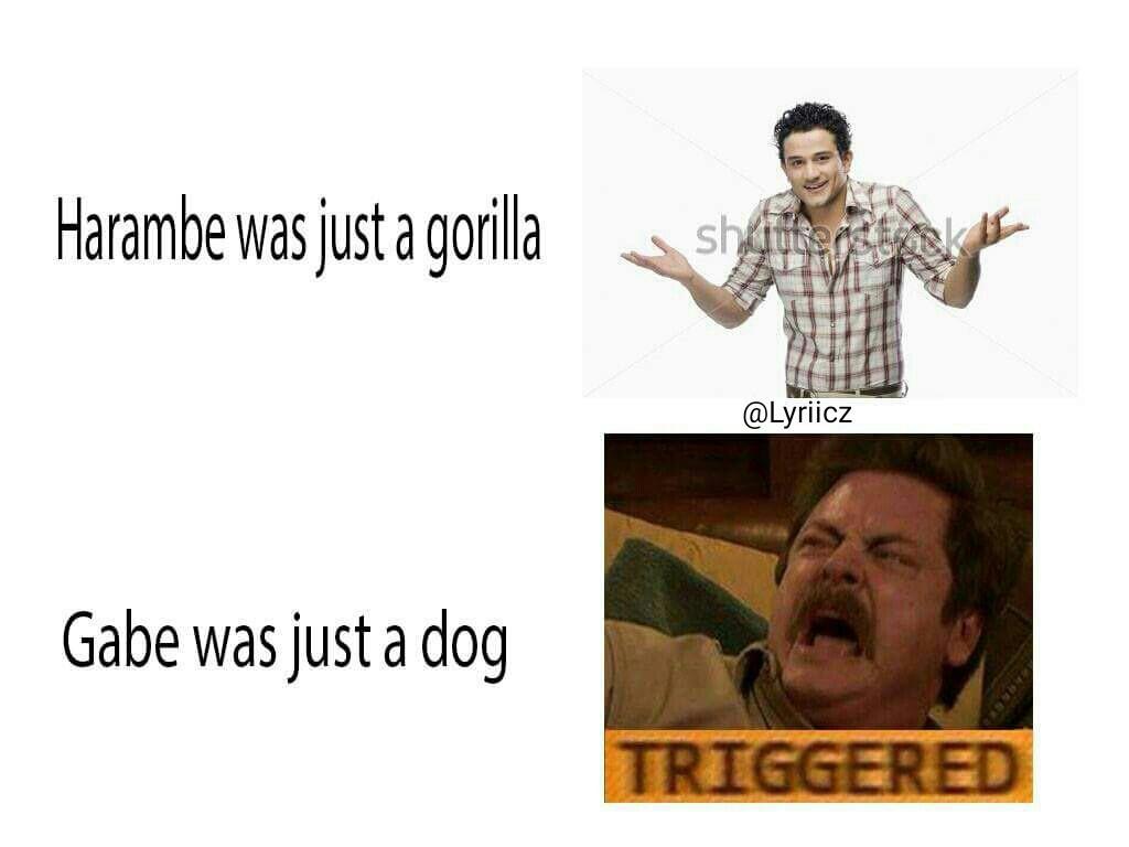 Bork in peace pupper - meme