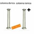 Colonna anionica