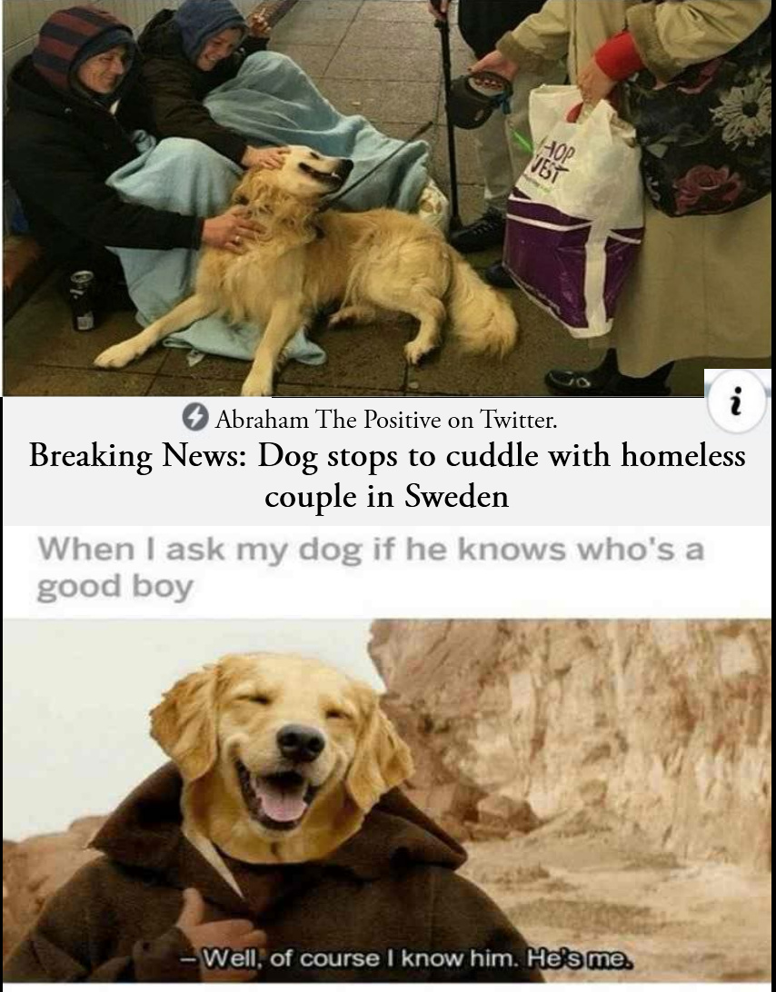 What a good boy - meme