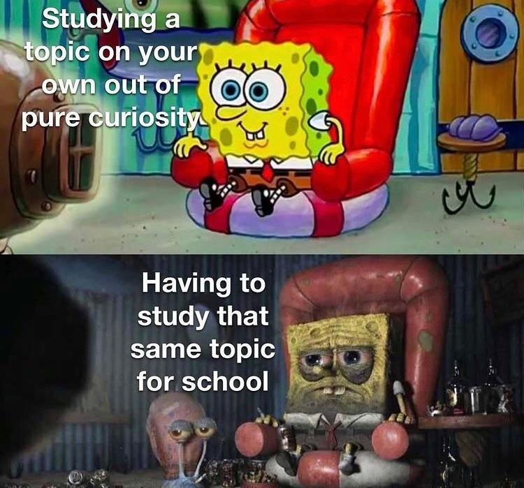 study - meme