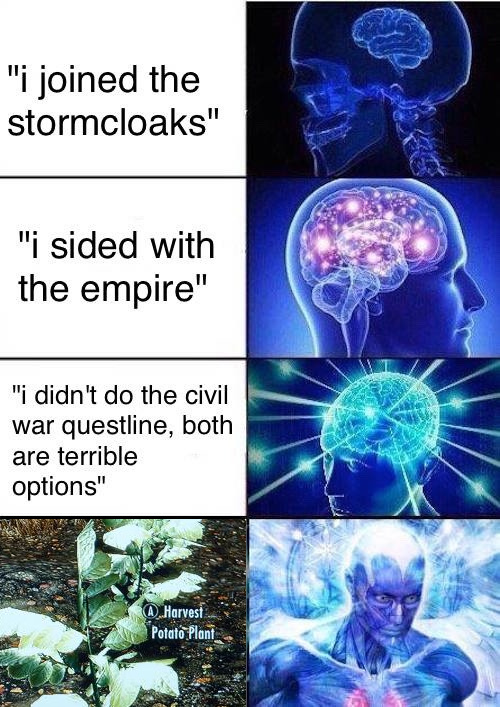 Potat - meme