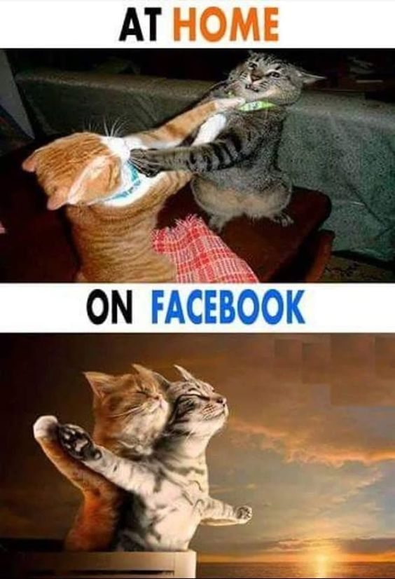 At home vs on Facebook | Gag Bee - meme