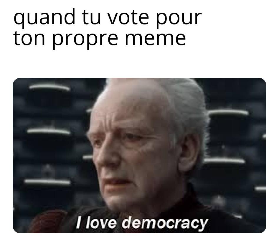 Vive le droit de vote ! - meme