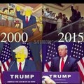 Simpsons Videntes