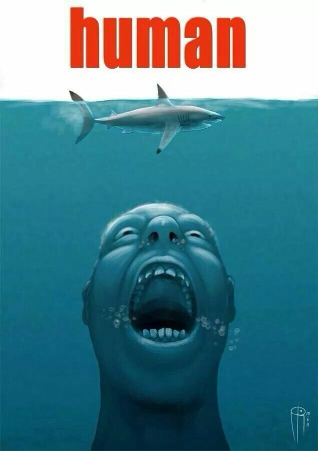Jaws in a parellel universe - meme