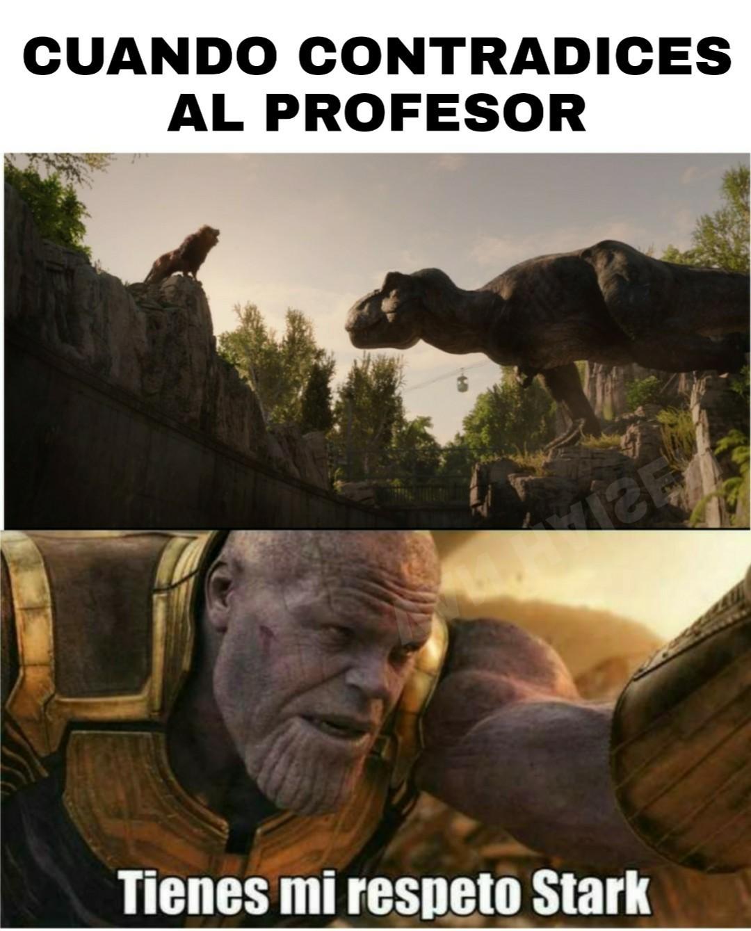 Mis respetos al rey de la selva - meme