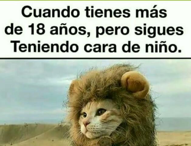Hola amigos! :) - meme