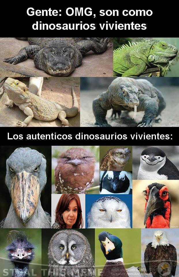 el verdadero argentinosaurus - meme