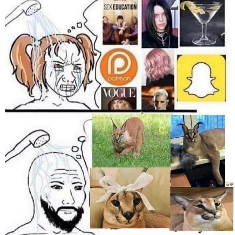 Floopa - meme