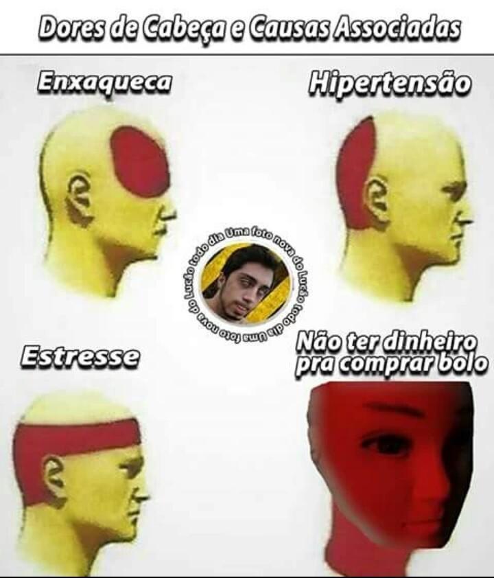 Bolo - meme