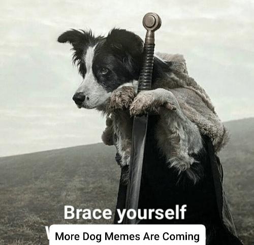 Bork - meme