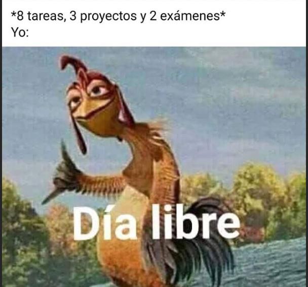 Día libre - meme