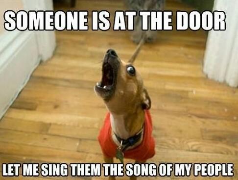Listen to my amazing voice - meme