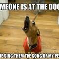 Listen to my amazing voice
