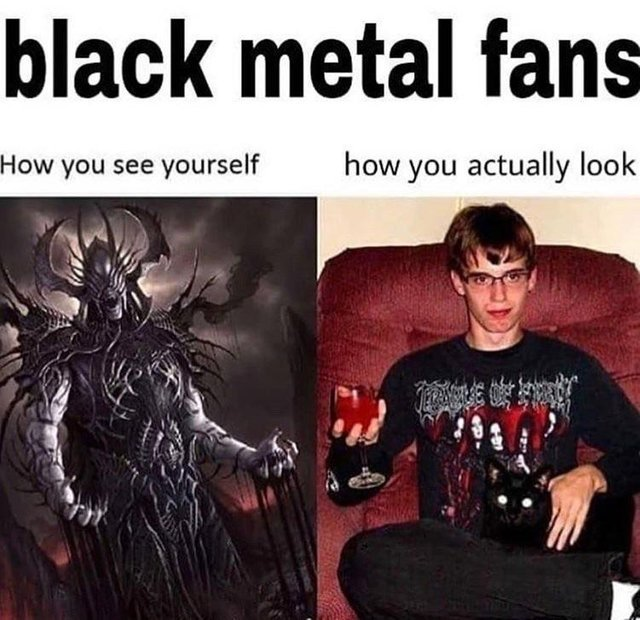 Black Metal: how you see yourself vs how you actually look - meme