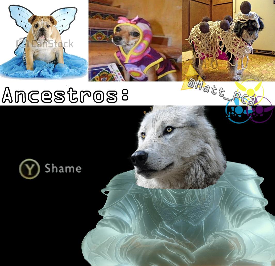 Shame - meme