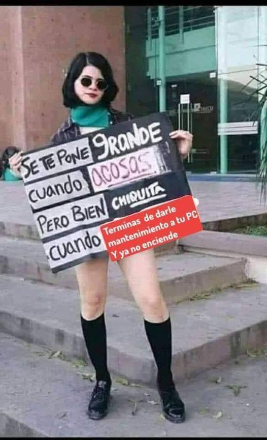 Feminista pcerda - meme